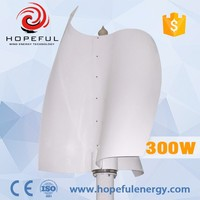 300w S type low rpm mini eolic energy wind turbine VAWT 24v price