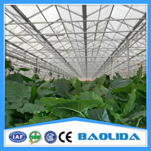 Commercial Vegetable Greenhouse Equipment For Sale
