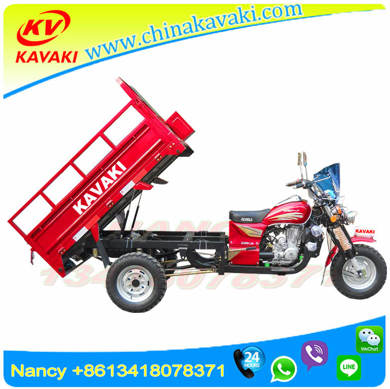 China fashionable three wheel family cargo motorcycle/ opened fuel tricycle