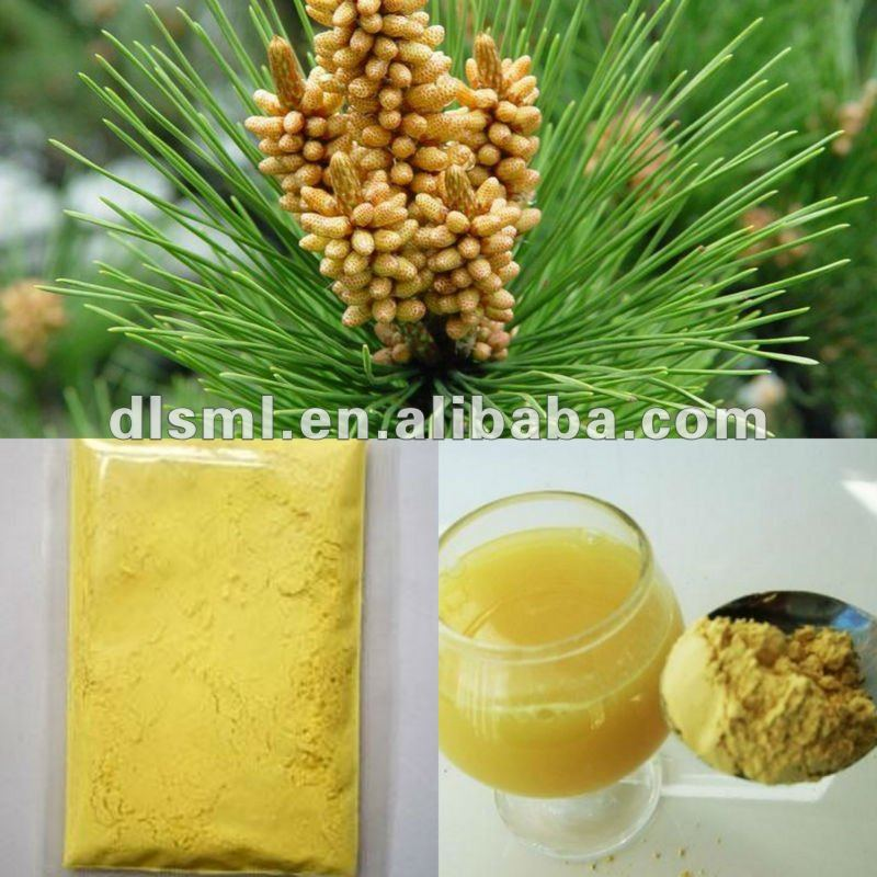 China wholesale pine pollen alive food supplement