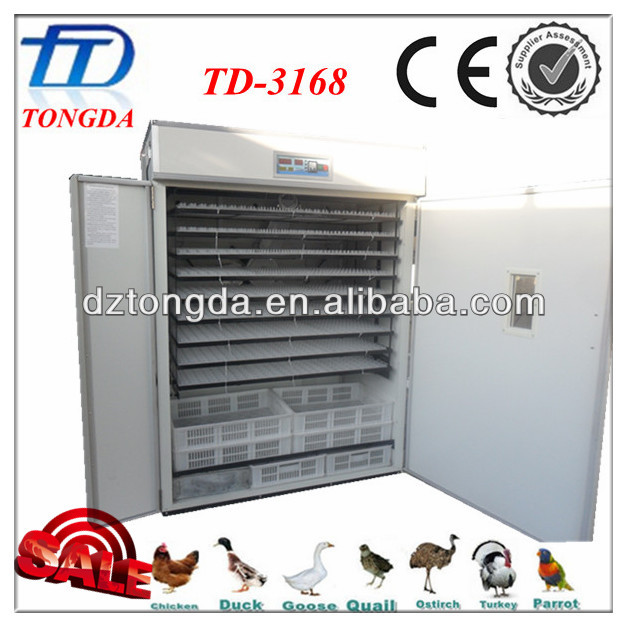 TD-3168 automatic poultry cheap chicken incubator fertile parrot eggs
