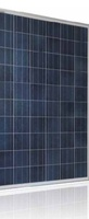 250W 255W 260W 265W 270W Poly Crystalline Photovoltaic Solar Panel
