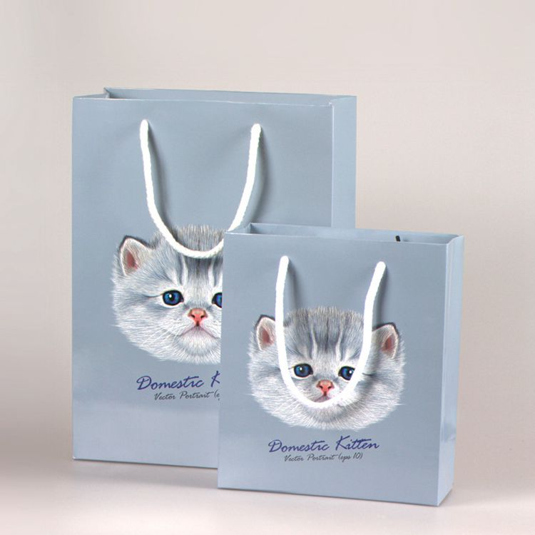 Customized logo silver hot-stamping logo luxury paper gift bags wholesale,paper bag printing with silk handle