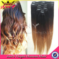 Wholesale brazilian human hair colored ombre clip in hair extensions
