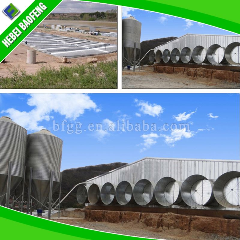 High quality prefabricated steel structure sport halls china egg chicken house design for layers