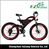 Strong great electric dirt bike with 48V 500w rear motor