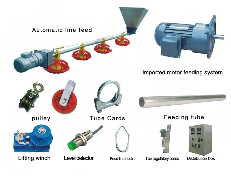 Wholesale chicken feeder pan system chicken automatic feed line