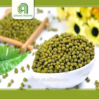 china black mung bean green gram with low price
