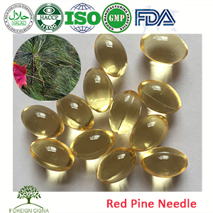 OEM Factory Sale Herbal Supplements Red Pine Needle Oil Capsules