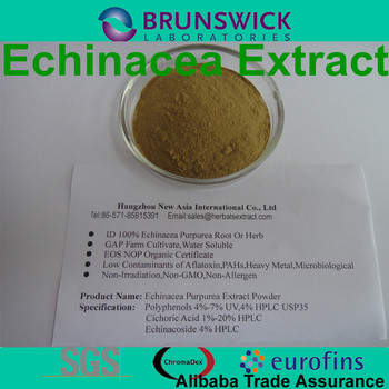 Pure high quality echinacea purpurea extract Polyphenols0.5%-7%,Chicoric AcidHPLC,100% ID,Low Contaminants of Aflatoxin 0.5%-5%