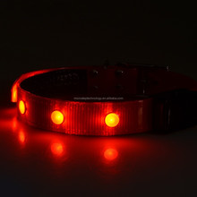 illuminate pet safety rechargeable solar dog collar with led light