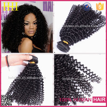 No tangle no shedding no lices beauty products 100 virgin afro curl african braiding hair