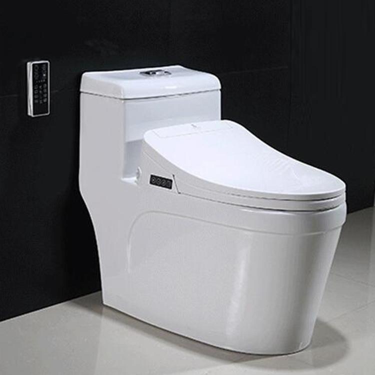 japanese bidet toilet combo. 35 japanese bidet toilet combo  Japanese Bidet Toilet Combo Cute Toilets Photos Bathtub for Bathroom Ideas