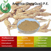 Dongquai extract/wild Chinese Angelica extract/Angelica (DongQuai) P.E.