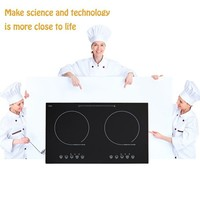 Electric microwave circuit board double burner induction cooker with copper coil