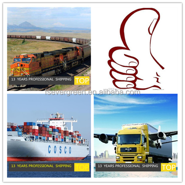 Global logistics tracking from China ocean forwarder to BANGKOK(PAT) Thailand