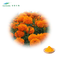 Kosher Halal supplier marigold extract for chickens with best price lutein