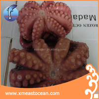 frozen boiled octopus whole round