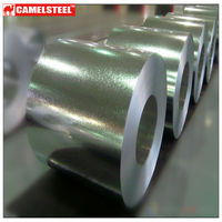 Shandong steel company hot dipped galvanized steel