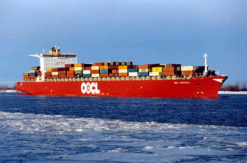 Sea Shipping Container service from China to New Zealand Wellington