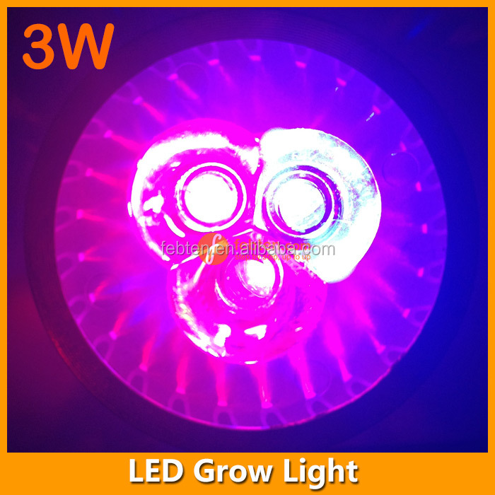 3 years warranty e27 3w red blue led plant lamp/led grow light