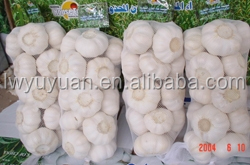 YUYUAN brand hot sail fresh garlic bulk garlic for sale