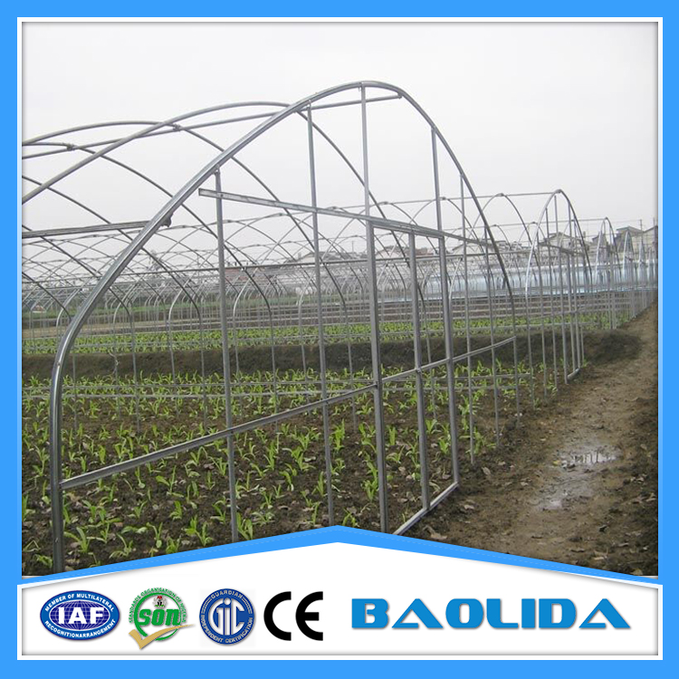 China supplier cheap price tunnel greenhouse