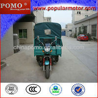 2013 Chinese Motorized Gasoline Hot Sale Cheap Cargo 250CC Motorbike Trike