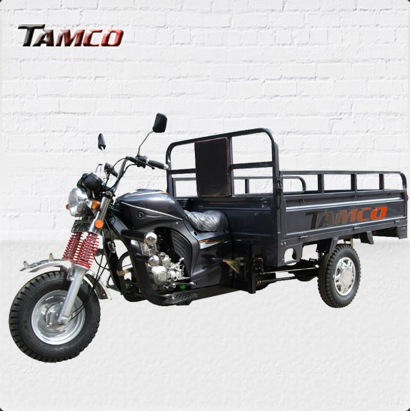 TAMCO T200ZH-DX trycicle/two person tricycle/ultralight trike