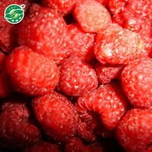 2016 new crop iqf fruits and iqf frozen bulk raspberry