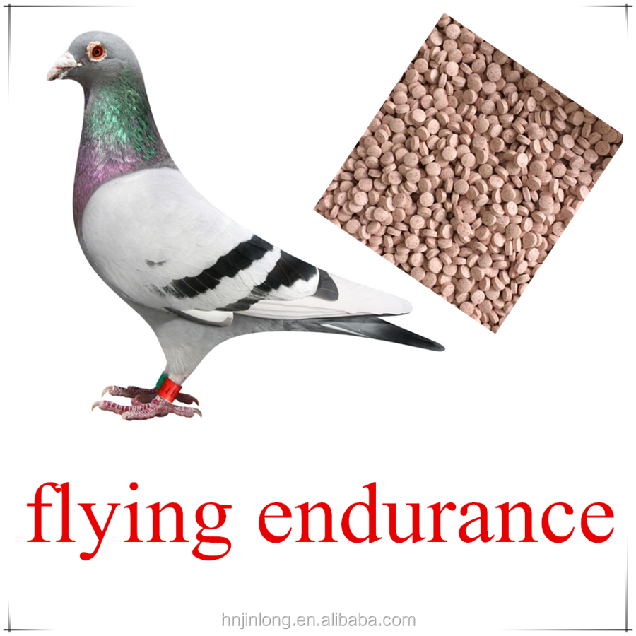 Blood Health Tablets For Racing Pigeon Products Flying Energy Medicine