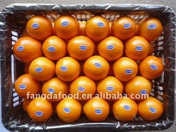 new season sweet chinese orange