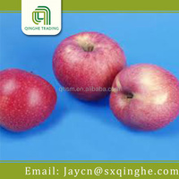 red delicious fresh star apple fruit for sale