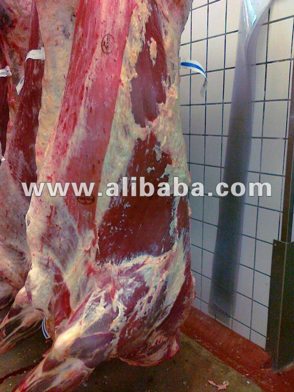 halal beef meat Russia approved
