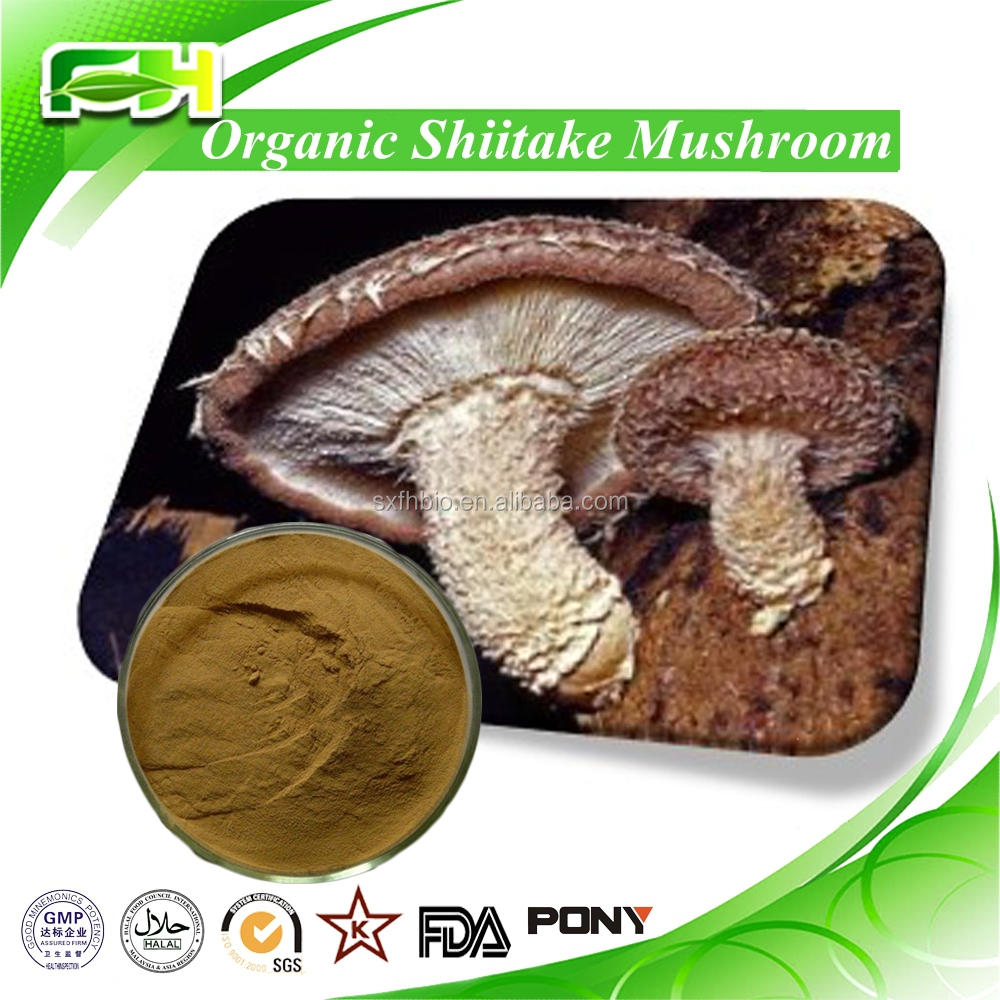 Best price from China supplier Shiitake Mushroom Extract
