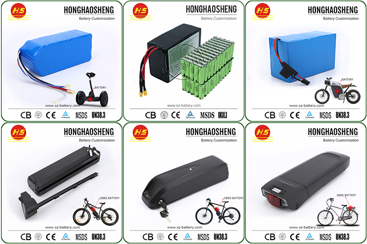 Super power ev li-ion battery 48V 1000W electric bike battery pack 20Ah with BMS charger