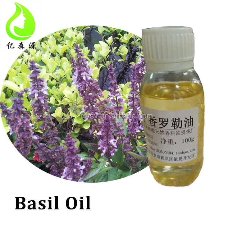 Pure Natural Basil Oil Factory Wholesale