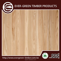 4x8 size elm furniture plywood for plywood hot press