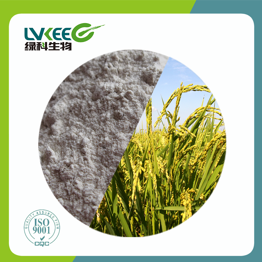 Soil Fertilizer/Chick/Fish/Cattle Organic Fermentation powder Bacillus Amyloliquefaciens/Megaterium from Top Supplier Lvkee