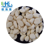 New AAA Grade Peeled Garlic Cloves from China in Low Price