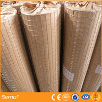 Anping Factory 1 Inch Galvanized Welded Wire Mesh