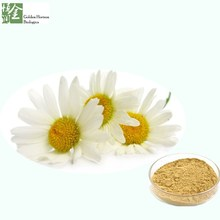 Chamomile Flower Extract P.E. Healthcare Product with Certifications