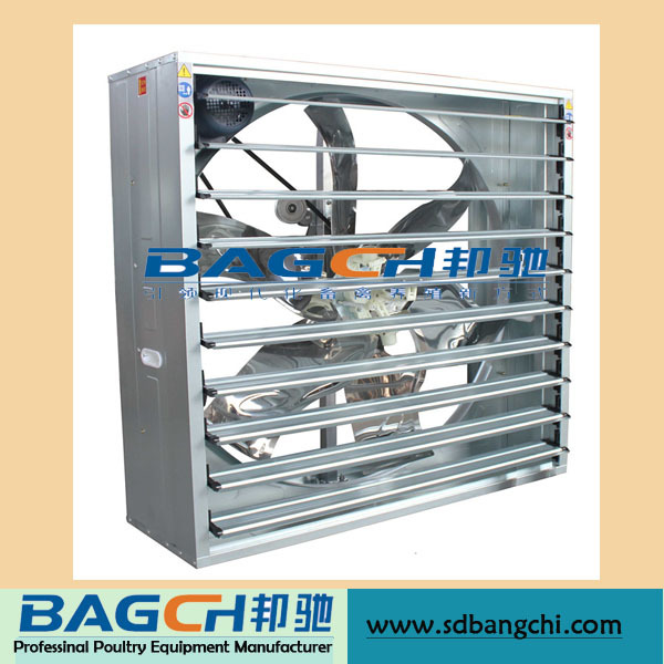 Best Selling Automatic Poultry Farming for Sale