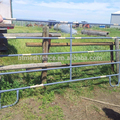 Round pipe OD32mm Cattle Corral Yard Panel