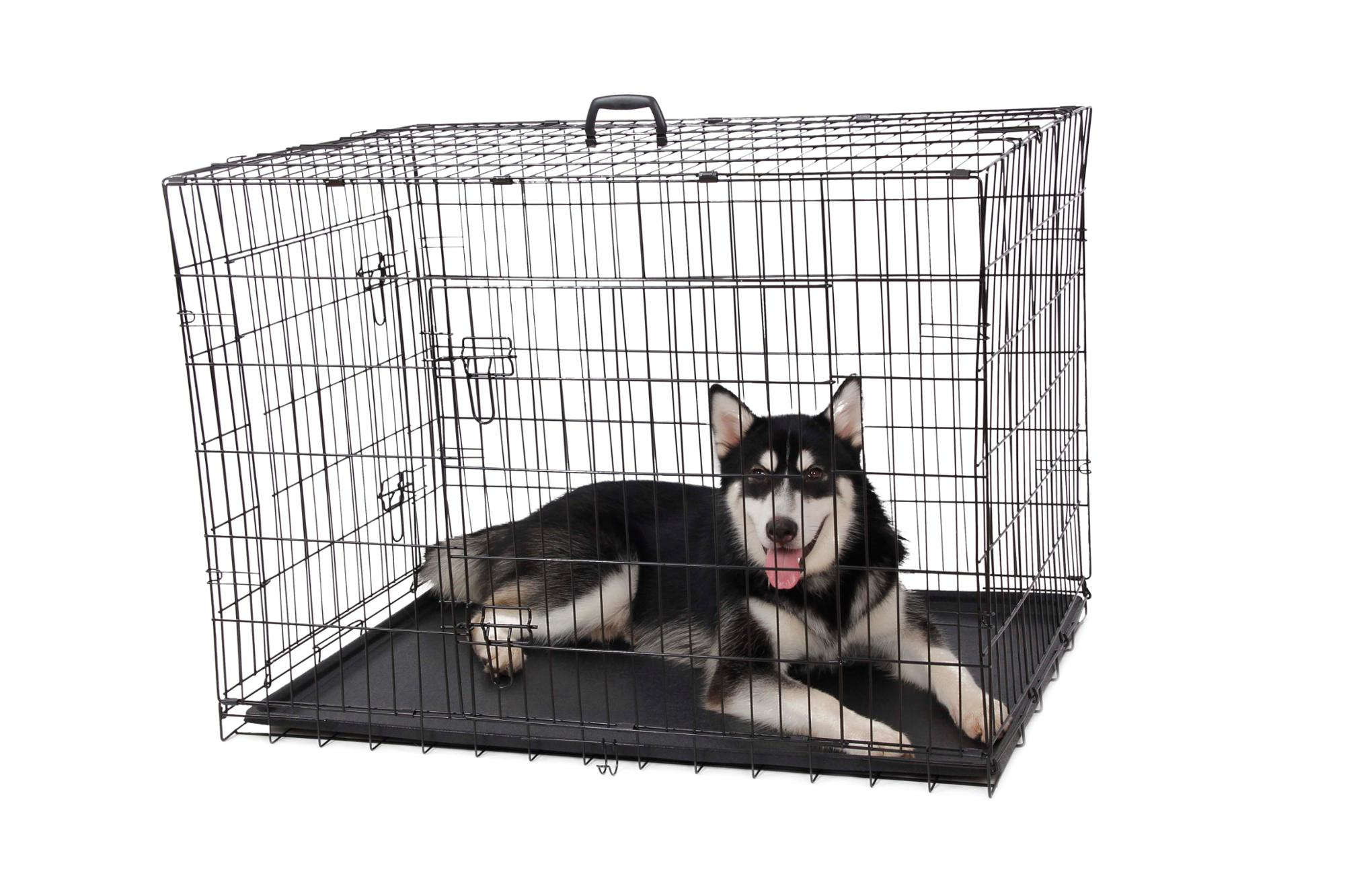 Detachable folding metal iron Pet Dog cage