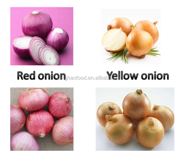 new crop fresh red and yellow onion,high qulity with lower price fast delivery