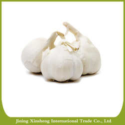 China fresh pure white garlic in different sizes