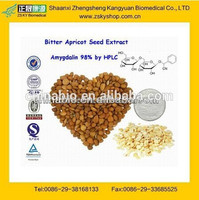 GMP Manufacturer Supply Natural Apricot Seed Extract
