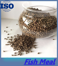 Catfish Feed Grade Fish Meal