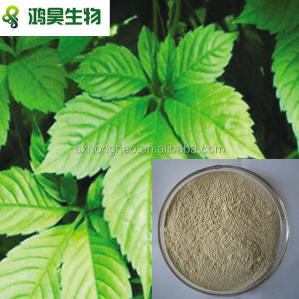 Gynostemma Extract 99% Cosmetic Grade /gynostemma p.e /100% Natural gynostemma extract powder/ISO certificated manufacture